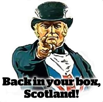 back_in_box